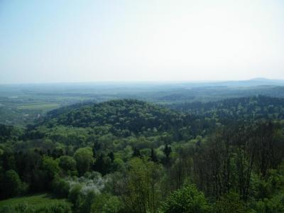 Kalwaria Pacławska - Wieża widokowa
