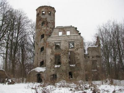Ruiny Pałacu - Jędzychowice