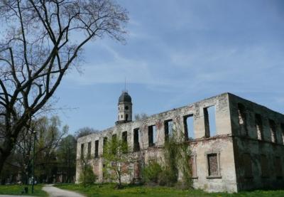 Ruiny Pałacu w Strzelcach Opolskich