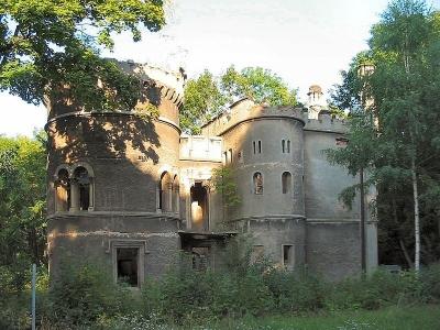 Ruiny Pałacu Tiele-Wincklerów w Miechowicach