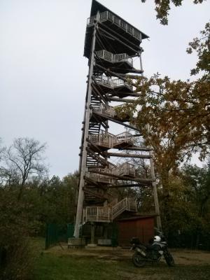 Wieża widokowa w Siekowie.