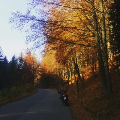 Trasa Porąbka-Wielka Puszcza