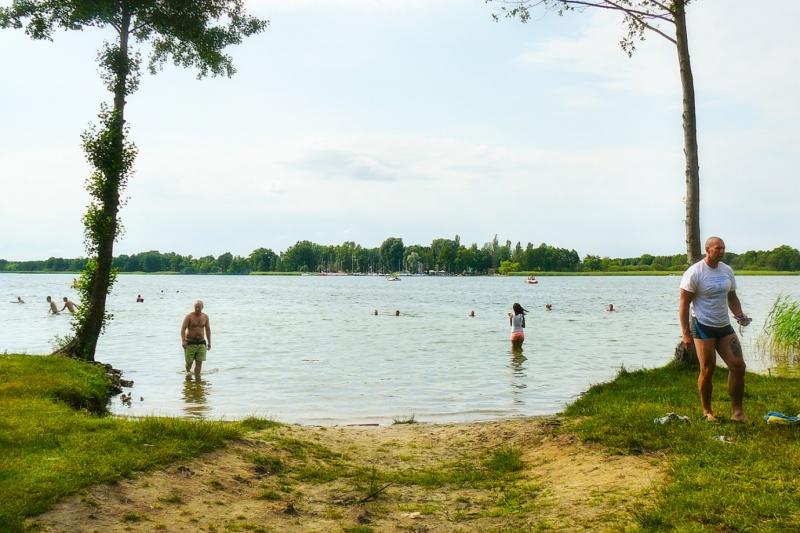 Jezioro Dominickie - Boszkowo