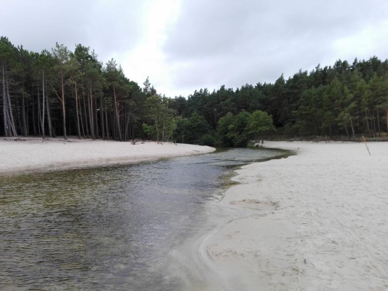 Plaża Dąbki - ujście Piaśnicy