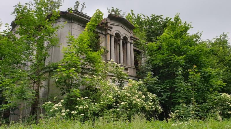 Włostów - Ruiny Pałacu