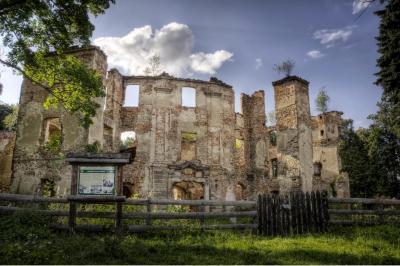 Ruiny Zamku w Owiesnie
